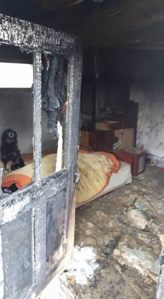 distrugeri incendiu 4