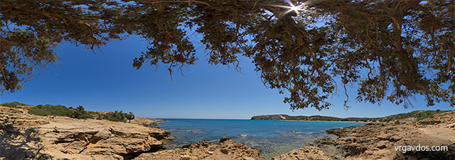 Shady tree by Sarakiniko Beach, Gavdos.