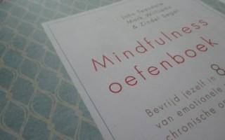 Mindfulness oefenboek - John Teasdale