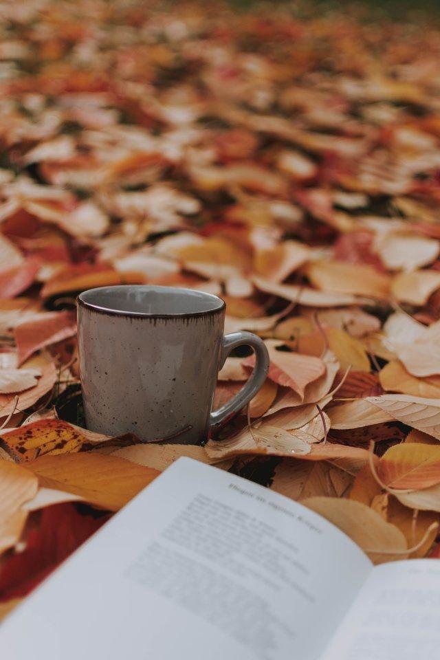 Herfstige Activiteiten voor Thuis