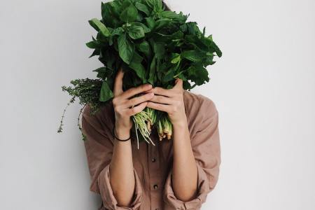 van vega naar vegan, foto credit: Daria Shevstova