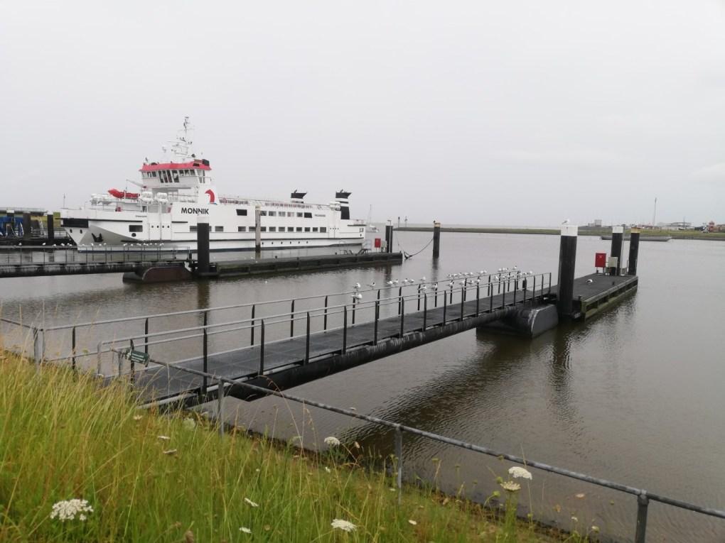 Eropuit in Nederland: Schiermonnikoog