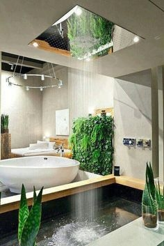 93 the Best Shower Enclosures - which Shower Enclosure Should You Use? 7246