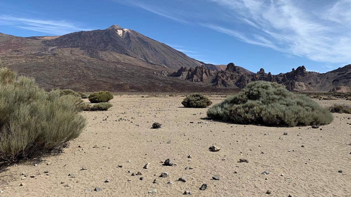 Must see op Tenerife: vulkaanlandschap rond de Teide