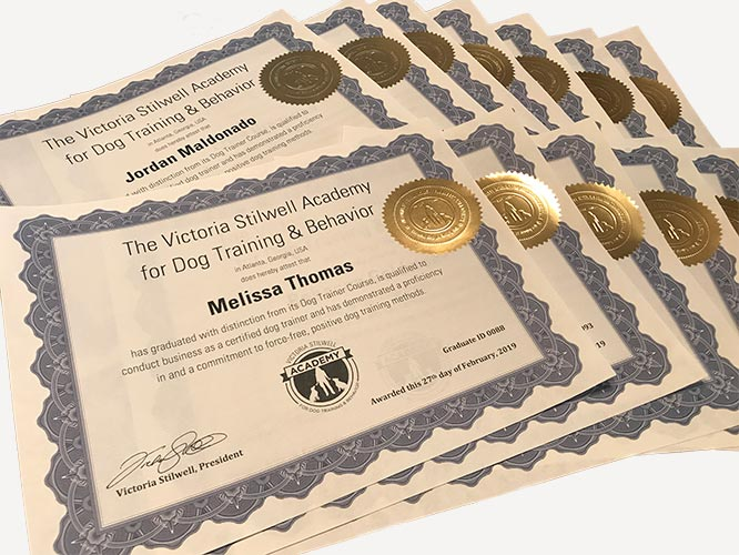 dog trainer certificates