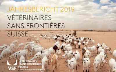 Das Jahr 2019 bei VSF-Suisse – im Jahresbericht schauen wir zurück auf unsere Arbeit