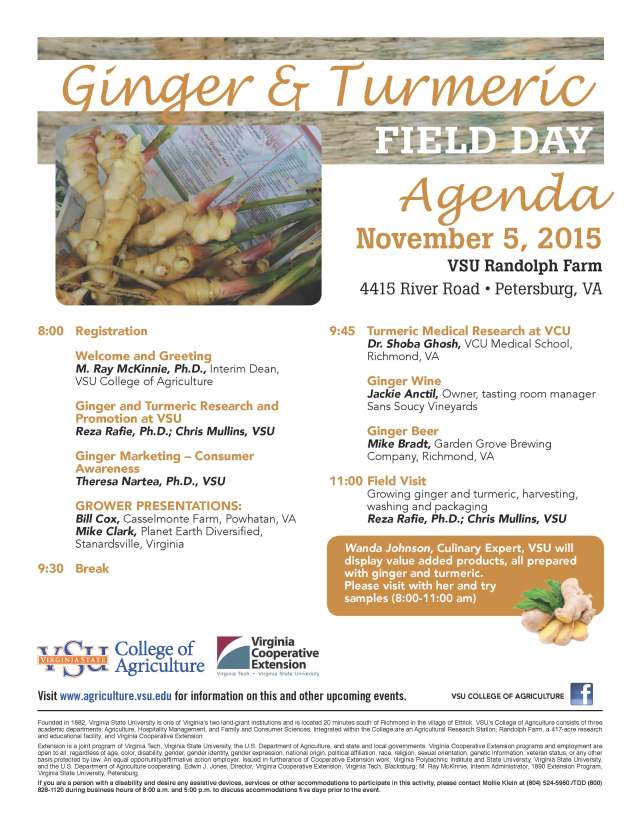 Ginger Turmeric Field Day