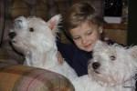 Филипп подружился с собаками