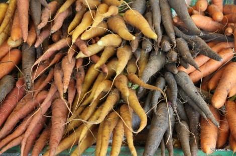 Кто сказал, что морковка бывает только рыжей? Рынок в порту Тель-Авива