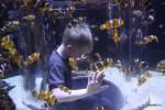 Мой младший внук Даня отметил свое шестилетие среди рыбок океанариума в Кейптауне