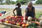 Выбираю манго на придорожном рынке в провинции Восточный Кейп