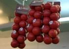 Этот срт помидоров предназначен, чтобы намазывать их на хлеб