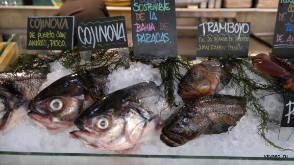 Свежая рыба для севиче в ресторане Гастона Акурио La Mar, ЛИма