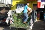 Так в Панаме перевозят свежую юку. Оптовый рынок Панамы