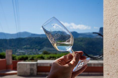 Вино Domaine de Toasc. Фото: Анатолий Мирюк