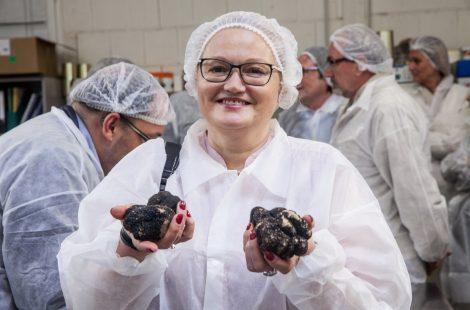 На трюфельной фабрике в Провансе. Фотто: Анатолий Мирюк