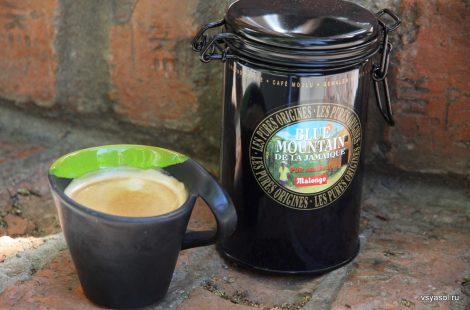 Лучший ямайский кофе от Malongo