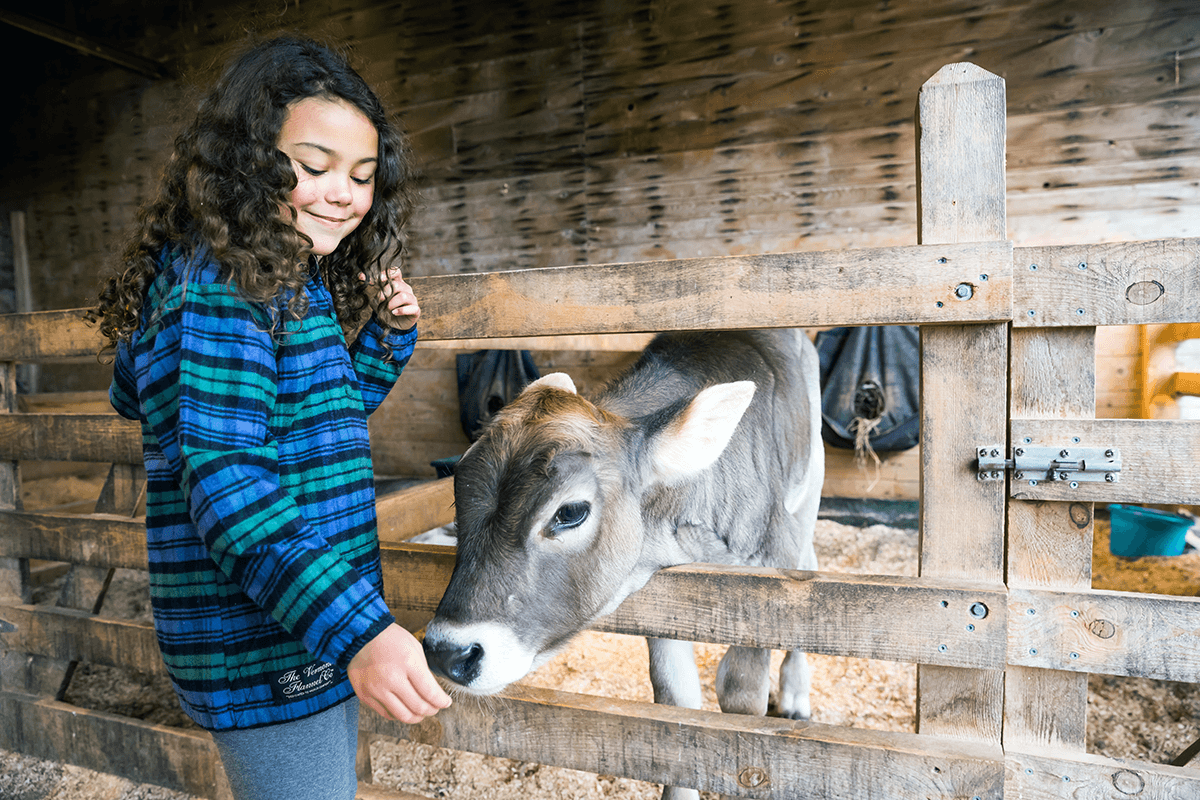 Image of a girl with a calf, wearing flannel shirt