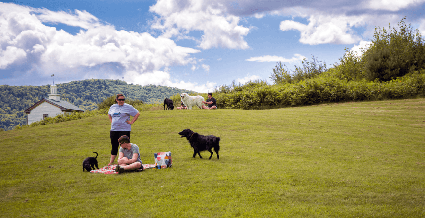 Image of people with their dogs on the lawn at Dog Mountain, Home of Stephen Huneck Gallery