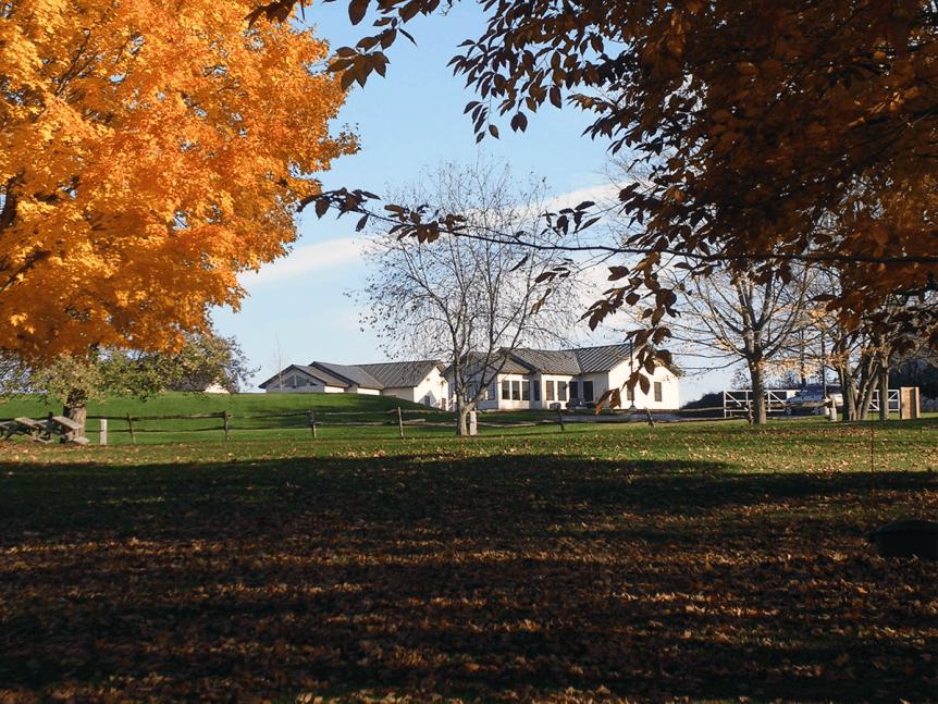 Fall at Saint Anne's Shrine