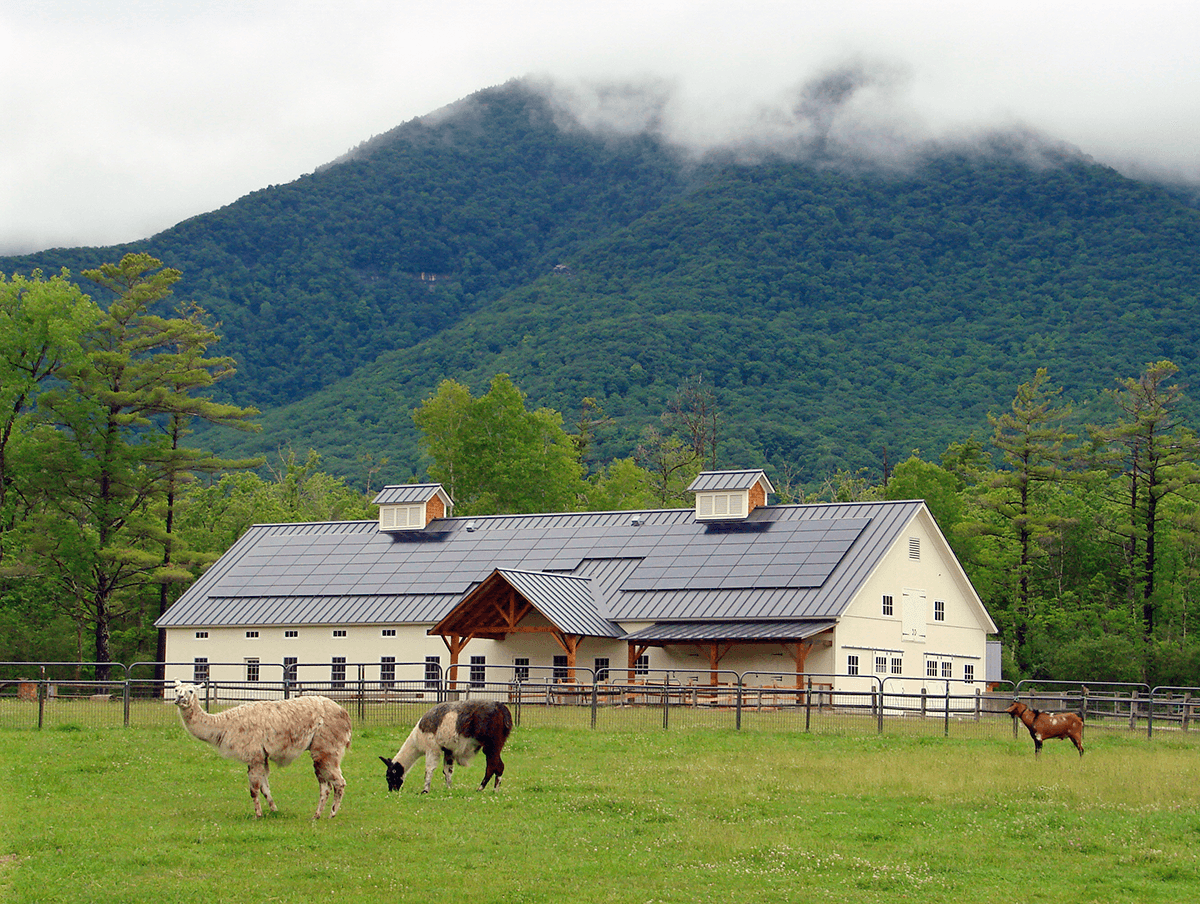 Image of barn with goats in the field in front of it at Hildene, The Lincoln Family Home