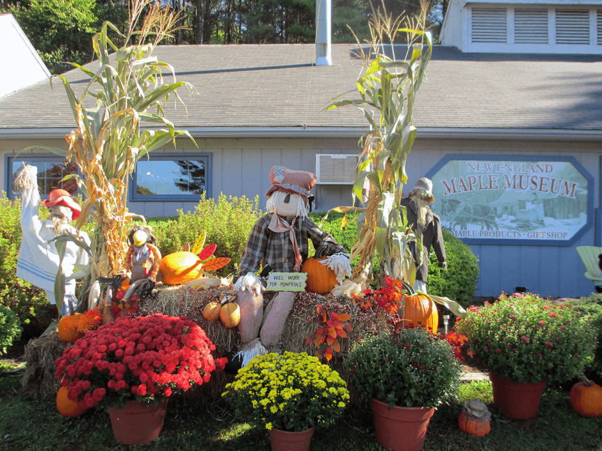 Image of scarecrows at New England Maple Museum