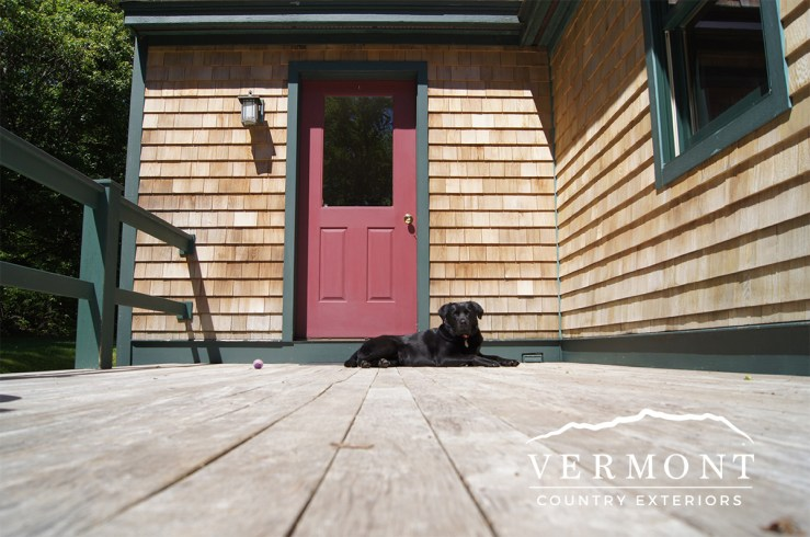 Dog sits on deck with power washed cedar shingles in background