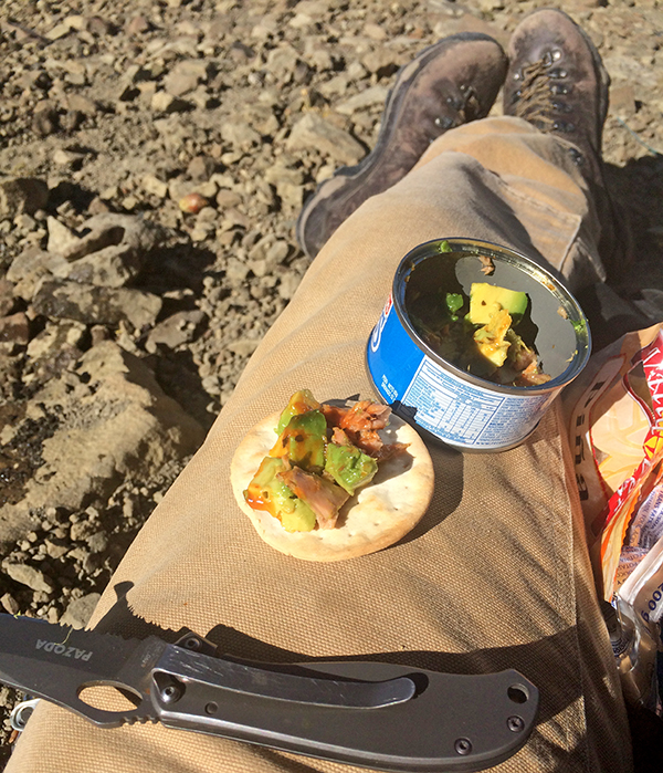 field-lunch