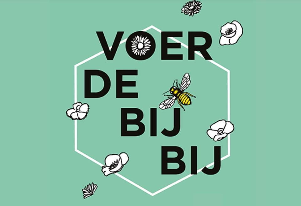Nationale zaaidag & Bijen tellen