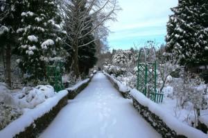 VTV Blijdorp volkstuinen in de winter