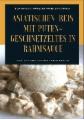 Asiatischen (Thai - Basmati) Reis mit Puten-Geschnetzeltes in Rahmsauce