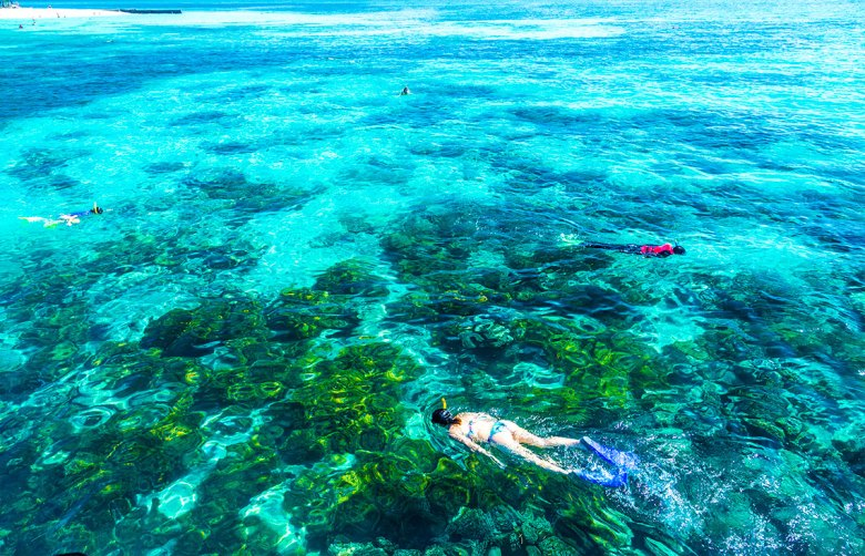 La Gran Barrera de Coral, Australia Foto: ©depositphotos/filipefrazao