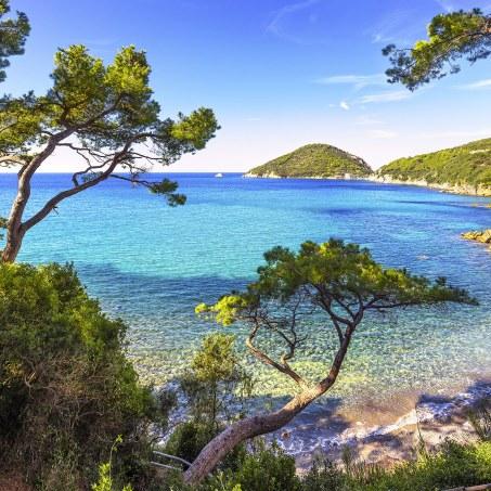 Playa de Viticcio , a 6 km de Portoferraio, Isla de Elba.