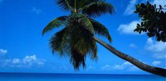 Viajar a Cancun