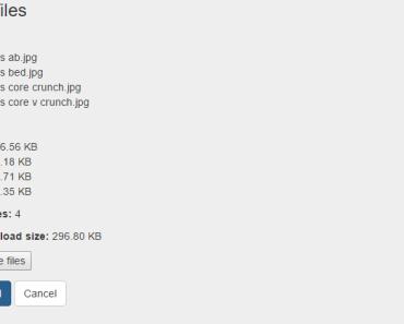 Drag and Drop Multiple File Uploader For VueJS 2