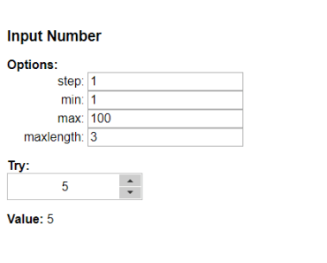 Vue Custom Number Input
