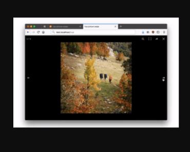 Vue.js Picture Swipe Gallery