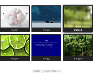 Image Gallery & Carousel Component - v-gallery