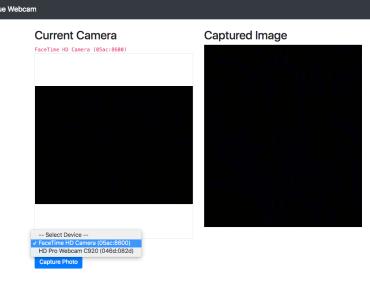Webcam Component For Vue.js