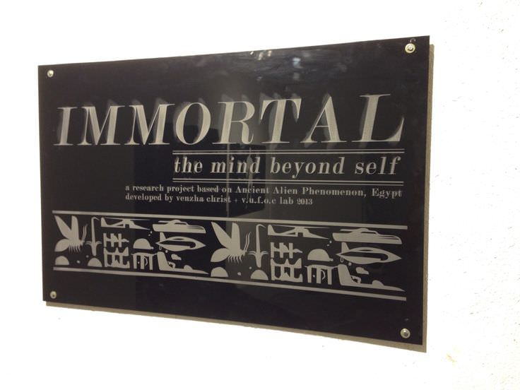 IMMORTAL SIMULATION MACHINE-7