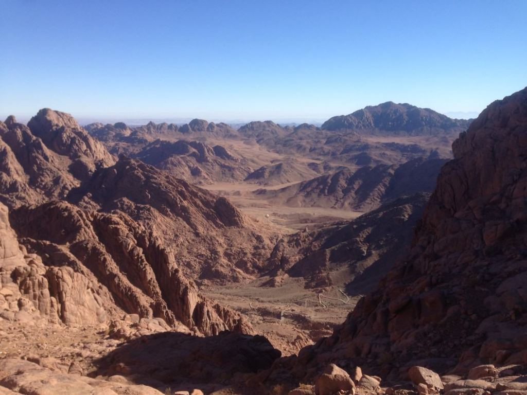 Research to Mount SINAI-19