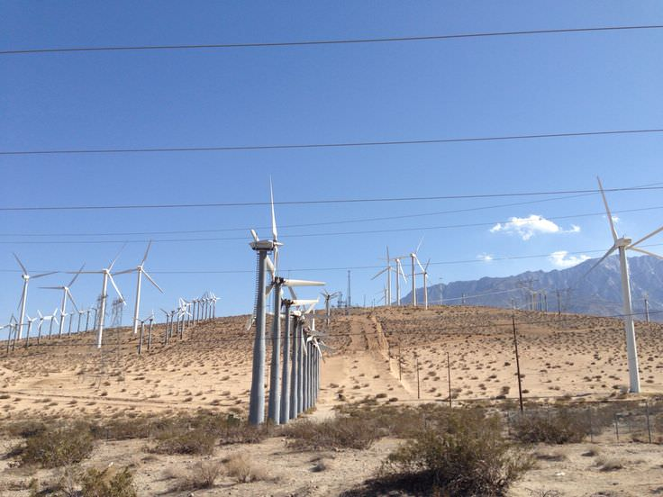Trip to Huge Forest of Giant Wind Turbines-19
