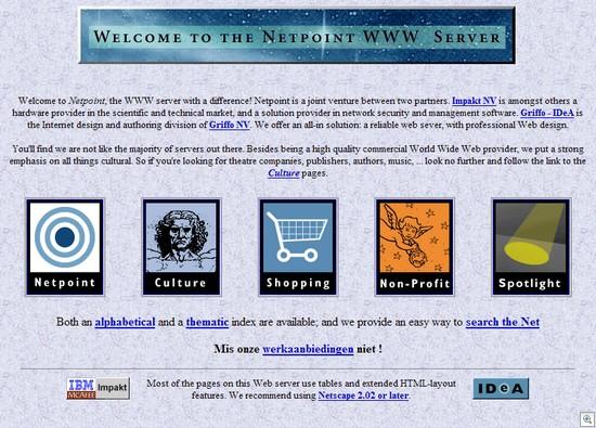 Netpoint_site