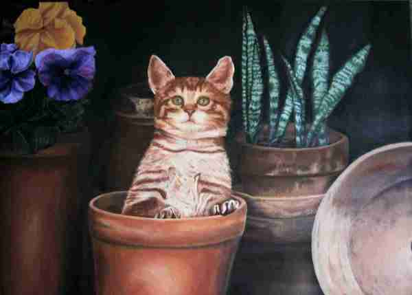 Gatto - Olio su Tela Autrice Alessia Interdonato