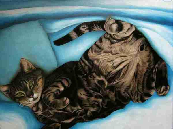 Gatto - Olio su tela Artista Alessia Interdonato