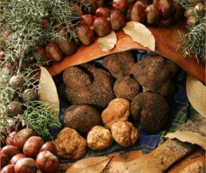 sagra-bagnoli-irpino