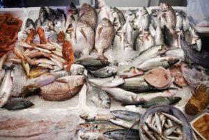 25-porto-cesareo-salento-pesce-fresco