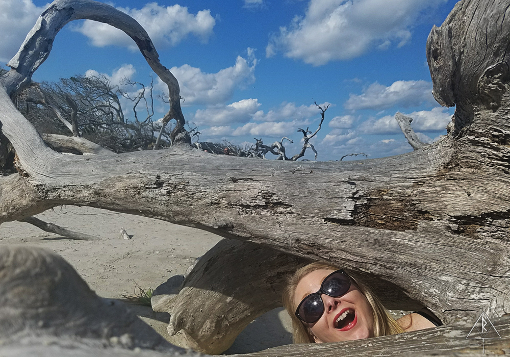 Entertaining our shutterbug sensibilities, documenting every square inch of worn and gnarled length of tree we could find on Driftwood Beach, Jekyll Island.