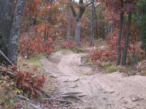 Gladwin Trail Information