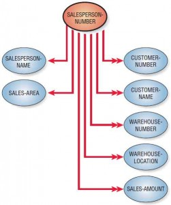 A data model diagram shows that in the unnormalized relation, the SALESPERSON-NUMBER has a one-to-many association with some attributes.